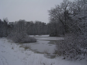 vennetje_winter